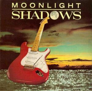 { record.artist }} - Moonlight shadows