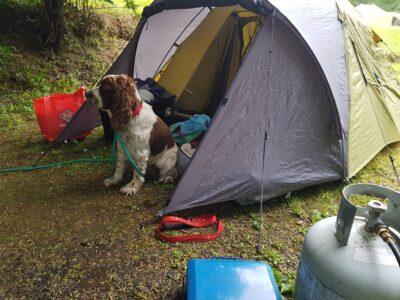 camping_05_12_2020-4.jpg